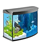 Tetra AquaArt Evolution Line LED Aquarium-Komplett-Set 130 Liter anthrazit (moderne...