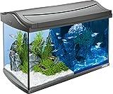 Tetra AquaArt Discovery Line LED Aquarium-Komplett-Set  60 Liter anthrazit (inklusive...