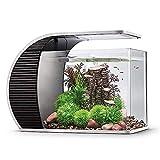 hygger LED Glasaquarium-Set 19 Liter, Panoramaaquarium geschwungene Frontscheibe mit...