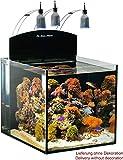 Aqua Medic Blenny Nano Reeftank 80l
