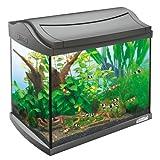 Tetra 171855 AquaArt Shrimps Aquarium-Komplett-Set 20 L, ideal für die Haltung und...