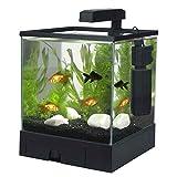 Aqua Box 2, Nano-Komplett-Aquarium 17 L, kratzfestes Glas, schwarz