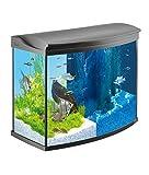 Tetra AquaArt Evolution Line LED Aquarium-Komplett-Set 130 L (inklusive...